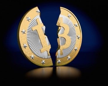 bitcoin slip in half