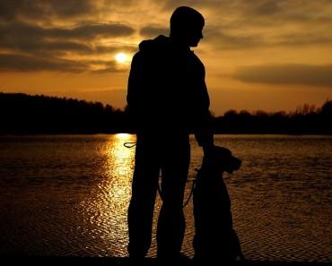 a_dog_is_a_man_s_best_friend_2_by_adamcroh-d5ld1kv