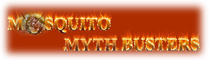 zika-myths