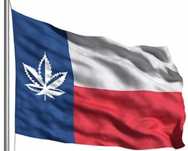 Marijuana Texas Flag